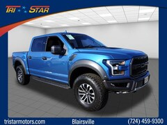 2019 Ford F-150 Raptor Crew Cab Pickup For Sale in Blairsville