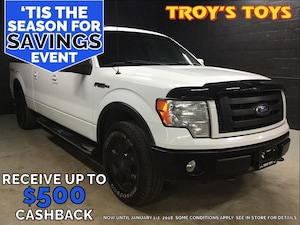 2010 Ford F-150 FX4 SuperCrew Styles