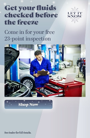 Free 23-Point Inspection