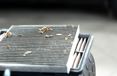 New Cabin Filter