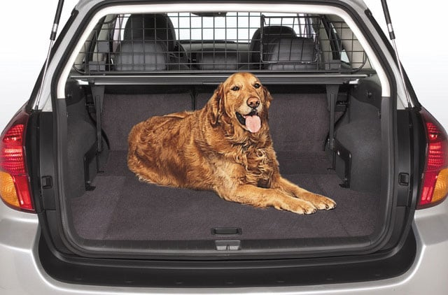Popular Subaru Accessories for Pets