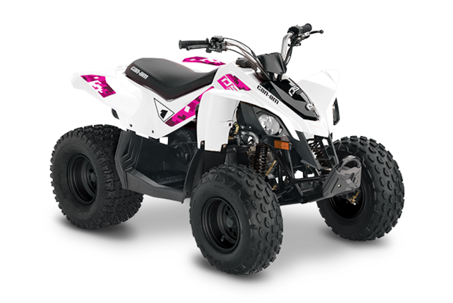 2019 CAN-AM DS 90