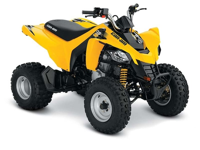 2018 CAN-AM DS 250 DS250