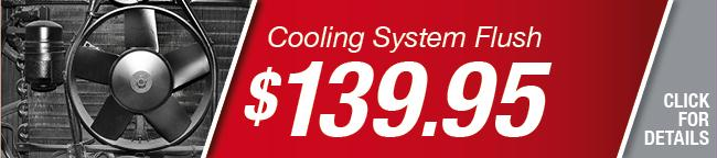 Cooling System Flush Special, Grapevine
