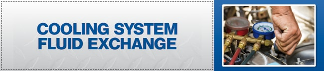 Cooling System Fluid Exchange Coupon, Scottsdale