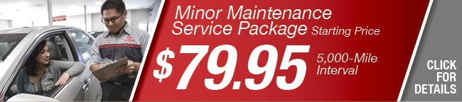 MINOR MAINTENANCE PACKAGE Coupon, Arlington