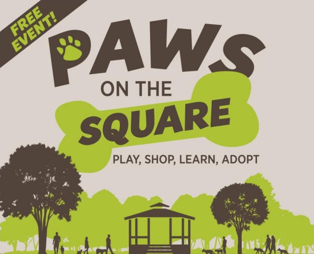 Paws on the Square