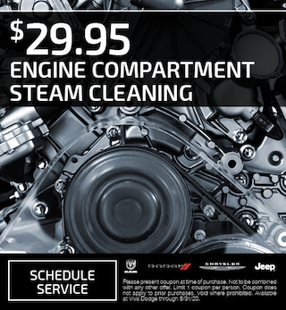 Engine Compartment Steam Cleaning
