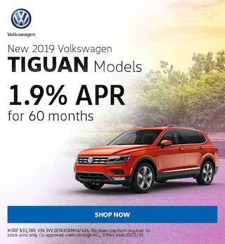 June 2019 Tiguan
