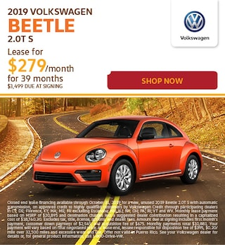 2019-Oct Beetle