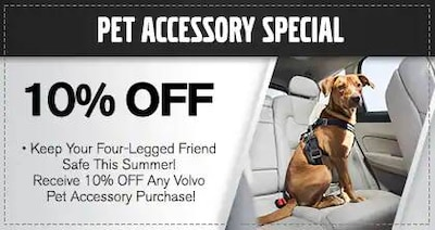 Pet Accessory Special