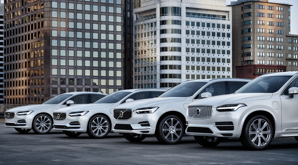 Volvo Lineup in White