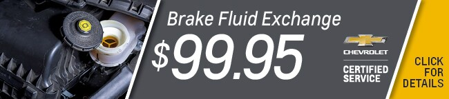 Brake Fluid Flush Special Car Repair Service Coupon, Orlando