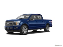 2019 Ford F-150 Platinum Truck for sale in Walker, MN