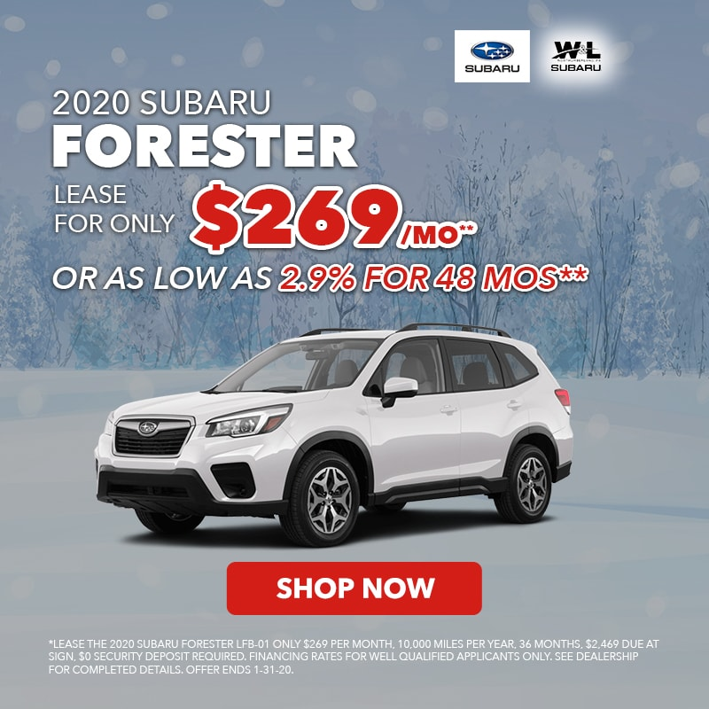 Dec Forester Lease
