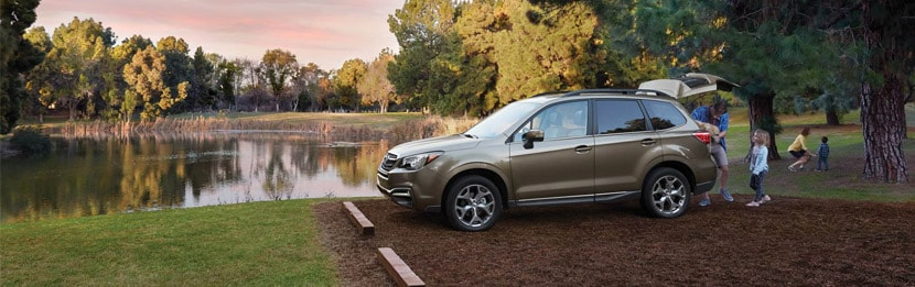 new 2017 subaru forester for sale northumberland pa price mpg. Black Bedroom Furniture Sets. Home Design Ideas
