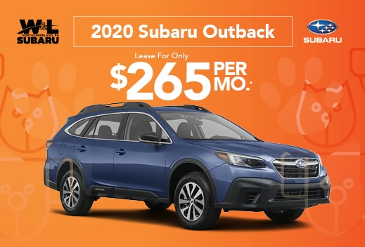 Outback October Special