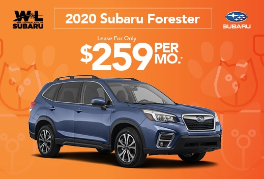 Forester October Special