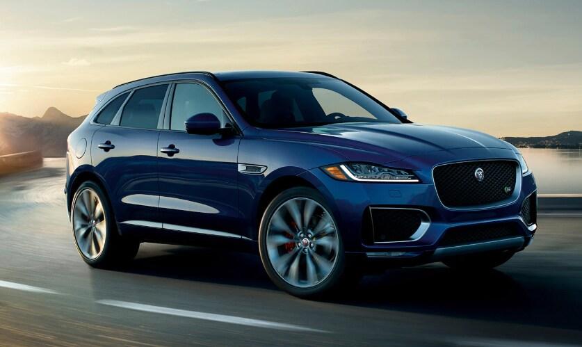 Jaguar Dealer Fl