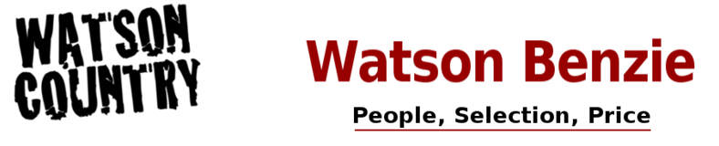 Watson Benzie, LLC
