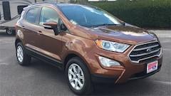 New 2019 Ford EcoSport SE SUV Lake Wales