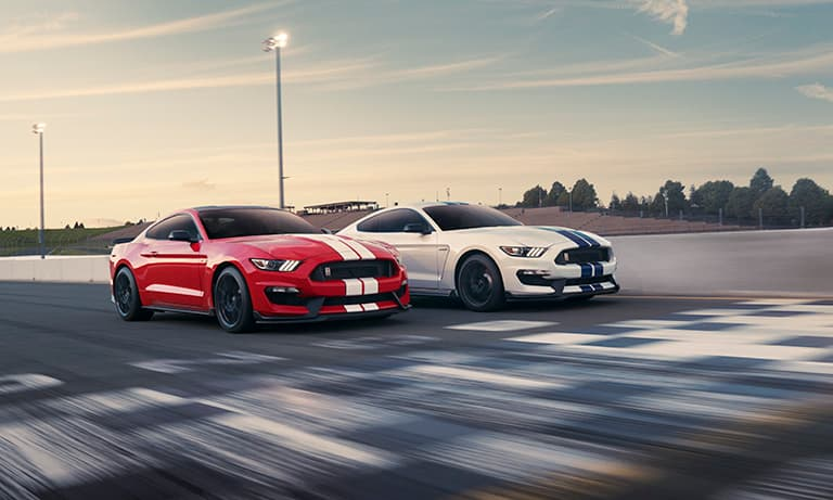 2019 Ford Mustang Shelby GT350 in White & Red Track Racing
