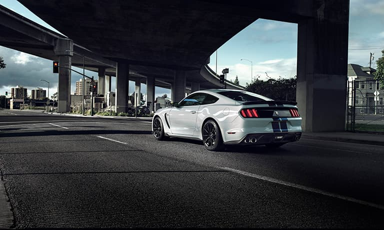 2019 Ford Mustang Shelby GT350 Rear Shot Under A Bridge