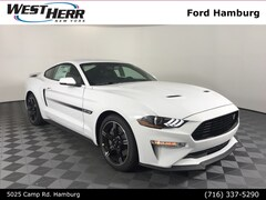 New 2019 Ford Mustang GT Premium Coupe FHM190017 for sale in Hamburg, NY