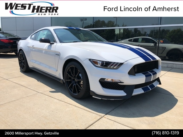 West Herr Ford Amherst >> 2019 Ford Shelby GT350 For Sale in Orchard Park NY | West ...