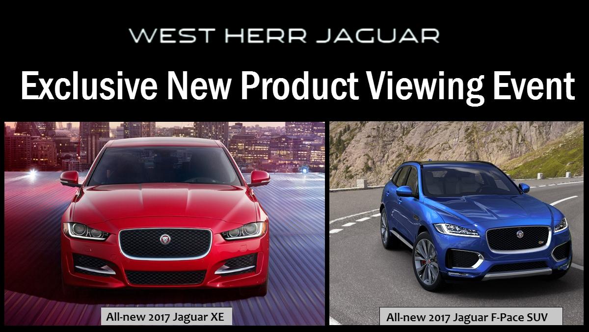 Jaguar Buffalo EVENT