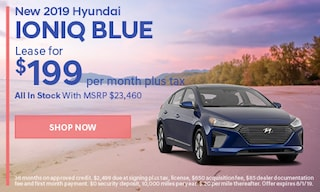 July | 2019 Hyundai Ioniq Blue