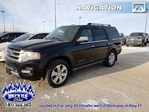 2016 Ford Expedition Platinum  8 Passenger SUV