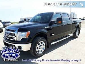 2013 Ford F-150 XLT One Owner - Low Mileage
