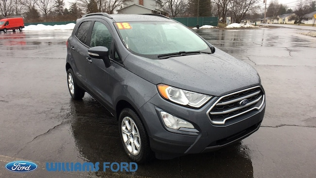 New 2018 Ford EcoSport SE Crossover in Sayre, PA
