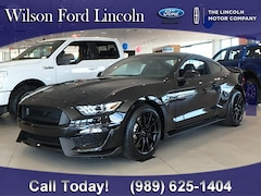 new 2019 Ford Mustang Shelby GT350 Coupe for sale in saginaw, mi