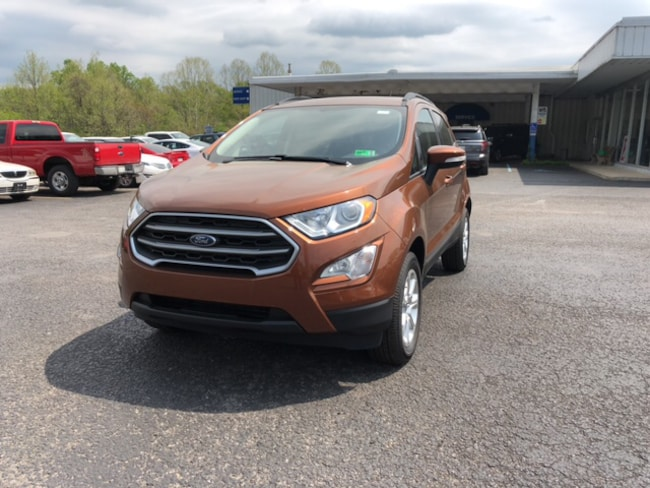 New Ford 2019 Ford EcoSport SE SUV for sale in Whitehall WV
