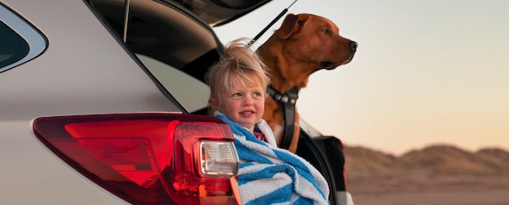 2018 Subaru Outback Dashboard Light Guide Dover DE | Winner