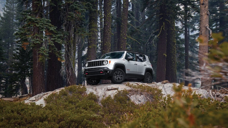 Jeep Renegade parked in the forrest