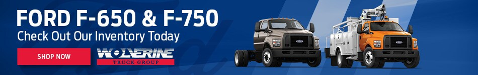 Ford F-650 & F-750 - Banner