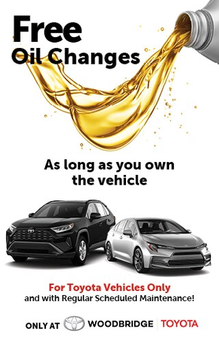 Free Oil Changes