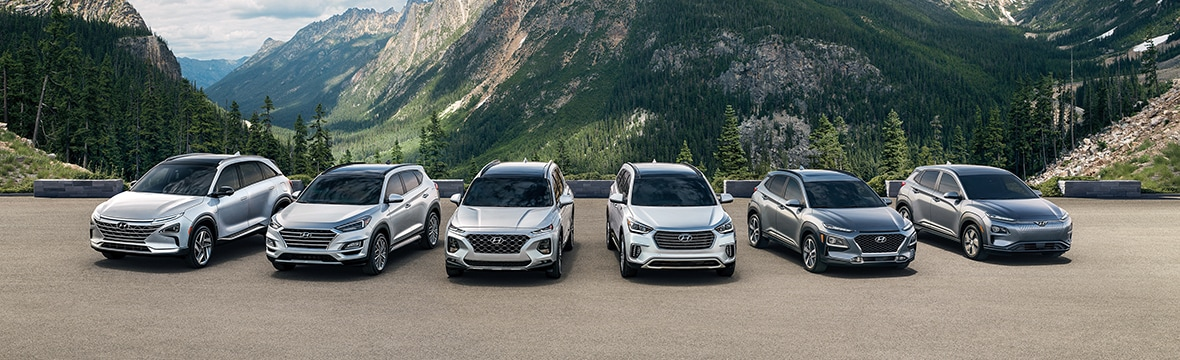 Hyundai lineup in the mountains