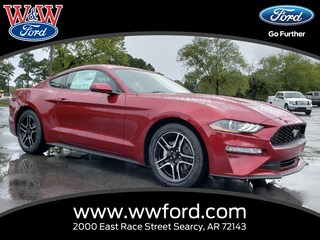 New 2019 Ford Mustang Ecoboost Premium 1FA6P8TH6K5111590 for sale in Searcy, AR at W & W Ford
