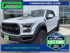 new 2019 Ford F-150 Raptor Truck for sale in Cold Spring MN
