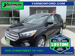 New 2019 Ford Escape SE SUV for sale in Paynesville MN