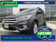 New 2019 Ford Escape SEL SUV for sale in Paynesville MN