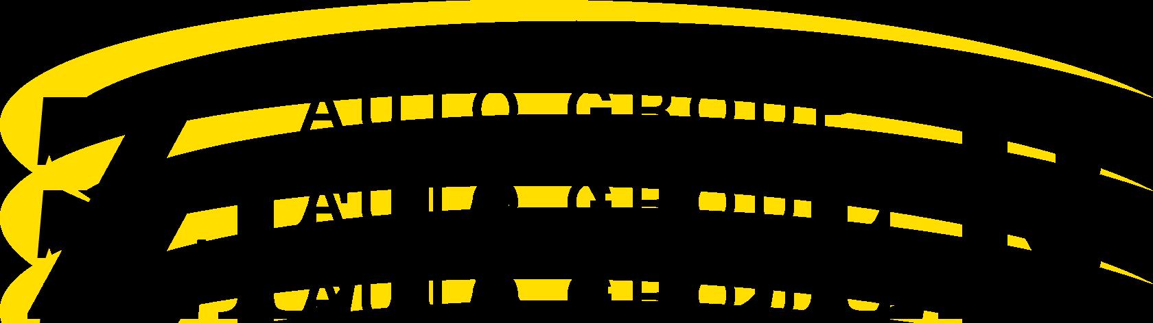 zeigler auto group logo